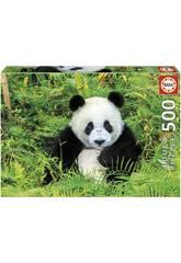 Puzzle 500 Oso Panda Educa 17082