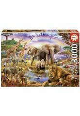 Puzzle 3000 Abrevadero Bajo El Arco Iris Educa 17698