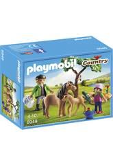 Playmobil Tierarzt mit Ponys 6949