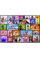 Puzzle 1000 Moments Partagés de 68 x 48 cm Educa 15518