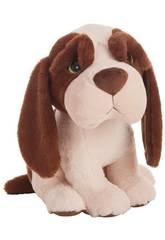Kuscheltier Hund grüne Augen 45 cm. Llopis Kreationen 20308