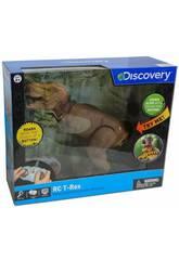 Radio Control Dinosaurio T-Rex Discovery World Brands 6000055 Teledirigido
