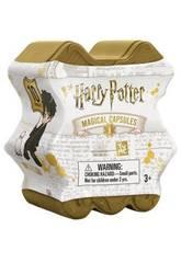 Harry Potter Cápsule Magique Famosa 700015842
