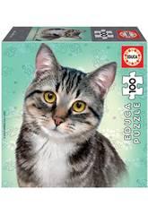 Puzzle Junior 100 Gato European Shorthair Educa 18808