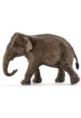 Elefante Asiático Hembra Schleich 14753