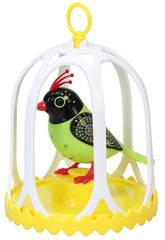 Digibirds avec Cage